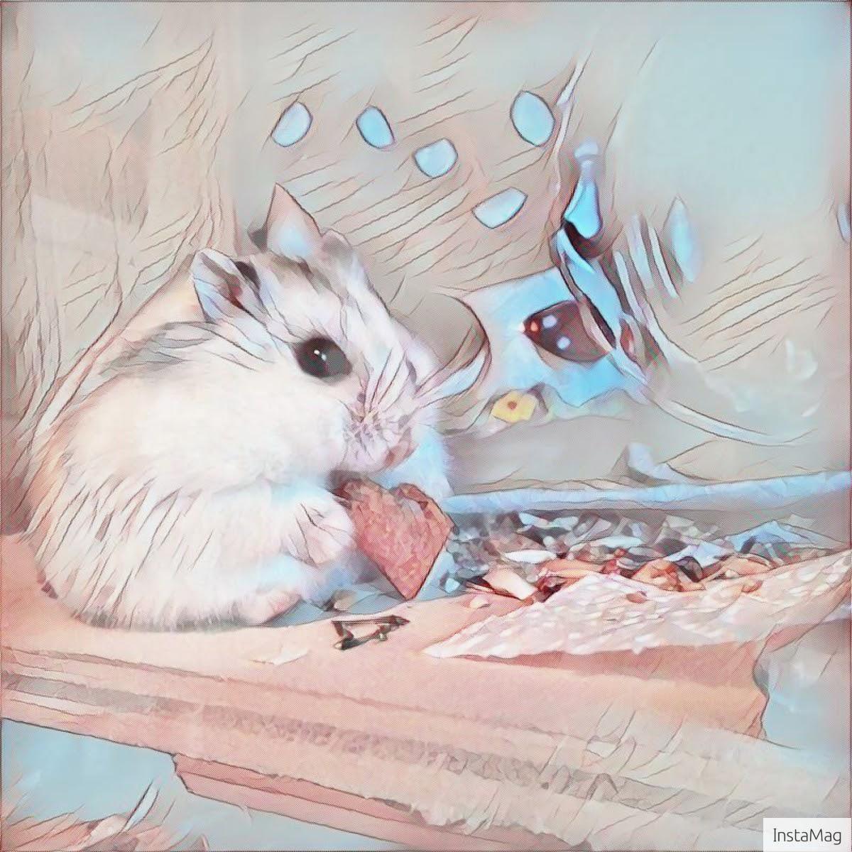 Hamster mit Andoid zum Kunstwerk verändert